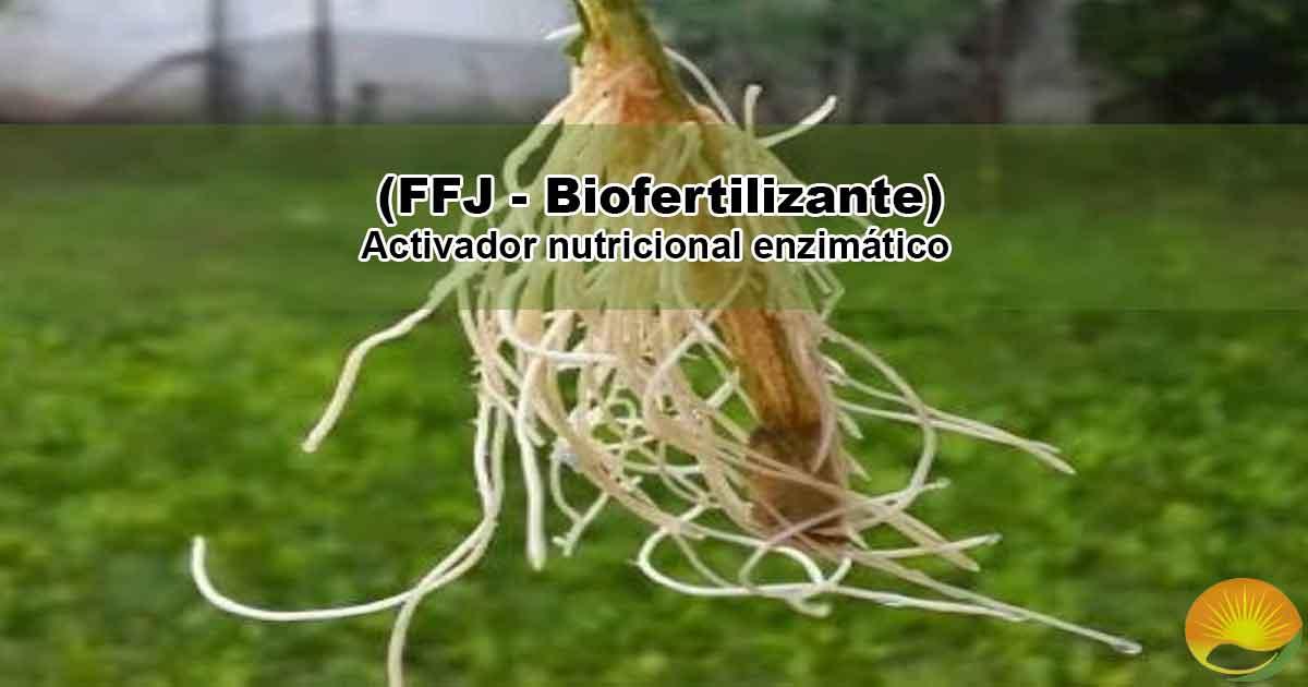 FFJ Biofertilizante
