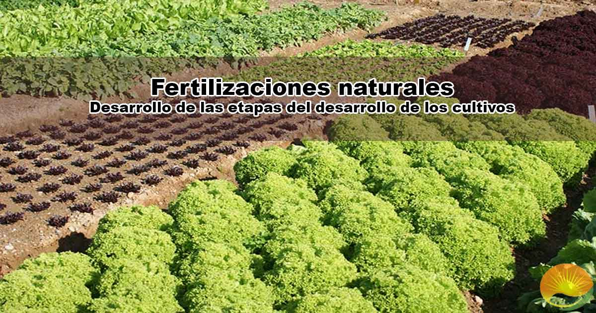 Fertilizaciones naturales