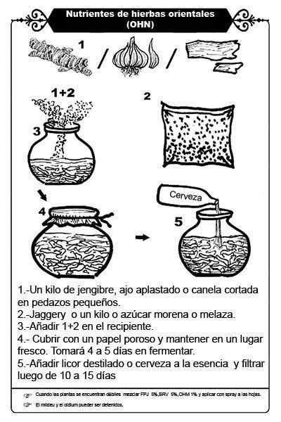 OHN Nutrientes de hierbas orientales.