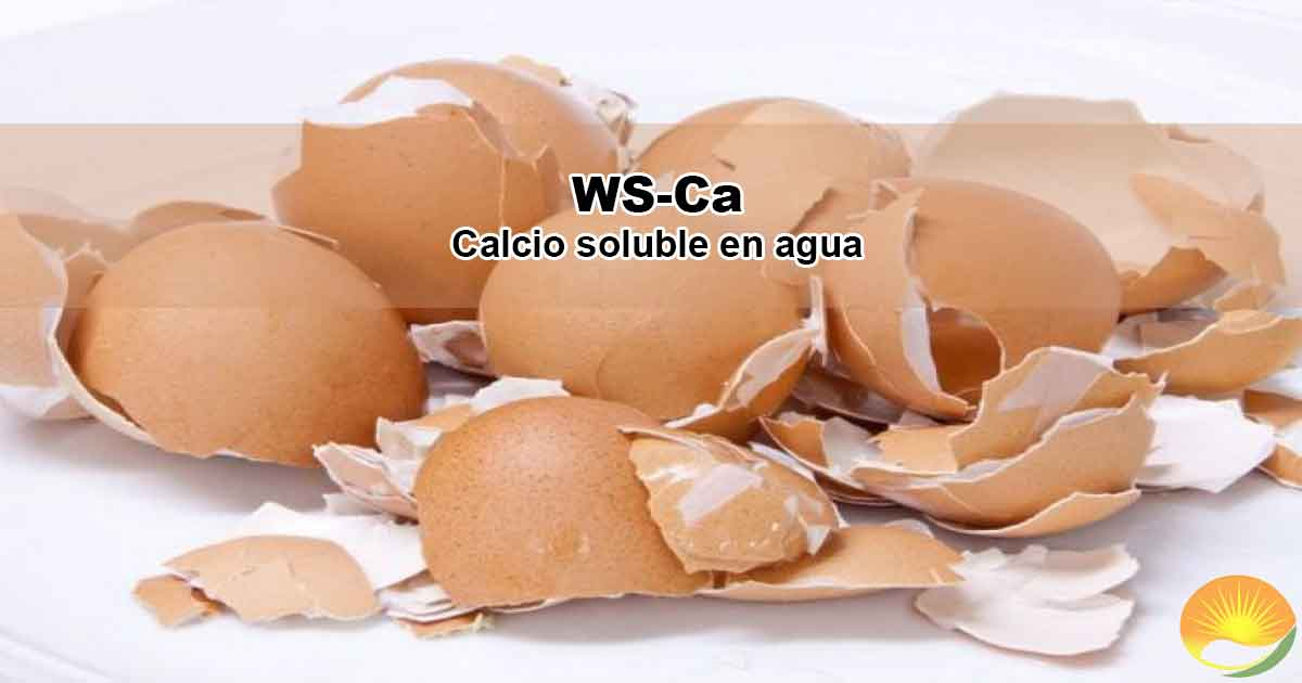 Calcio soluble en agua