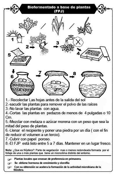 Fertilizante orgánico de savias y clorofilas [FPJ]
