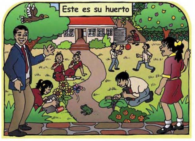 Huerto escolar. Ilustración