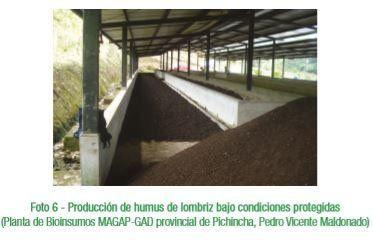 Producción de humus de lombriz bajo condiciones protegidas.