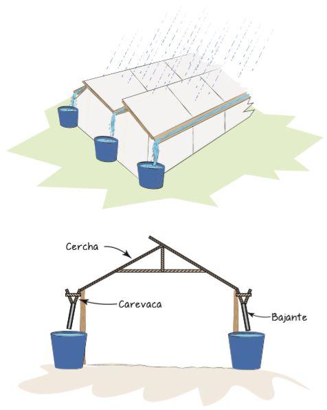 Cosechar agua de lluvia de techos de invernaderos y corralizas.