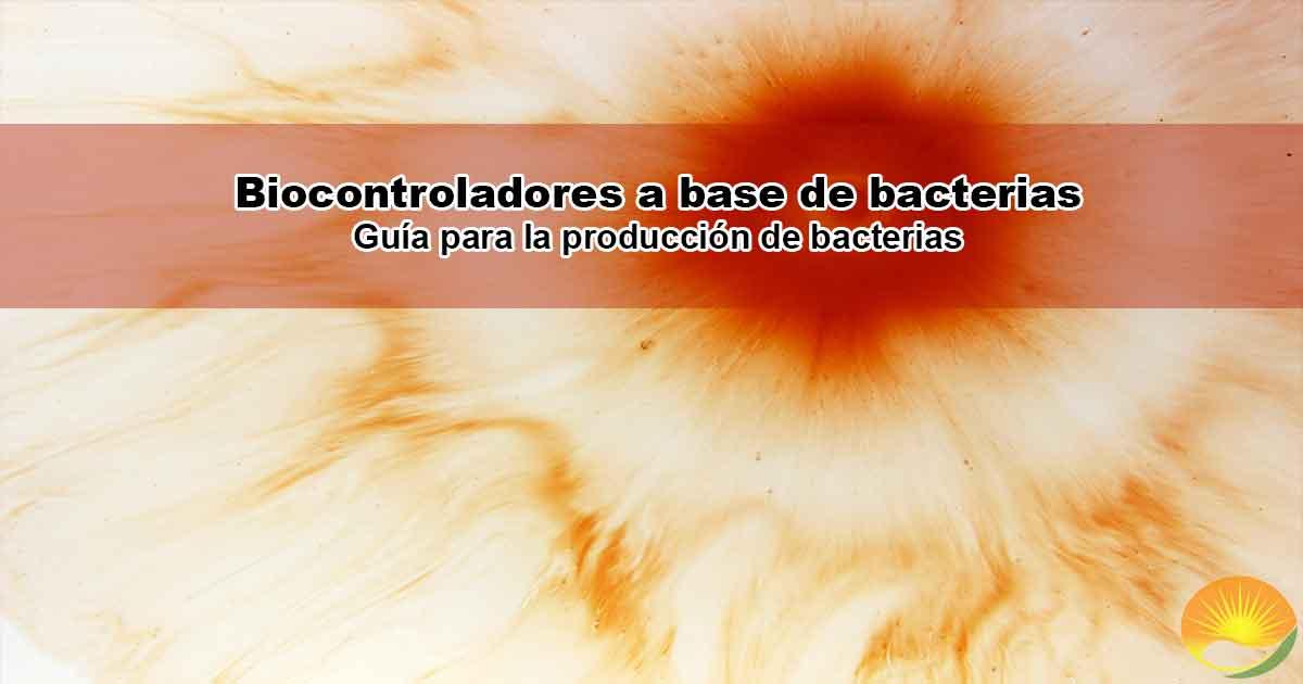 Producción bacterias