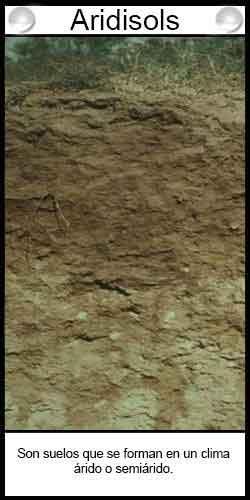 Clasificación de suelos agrícolas - Aridisols