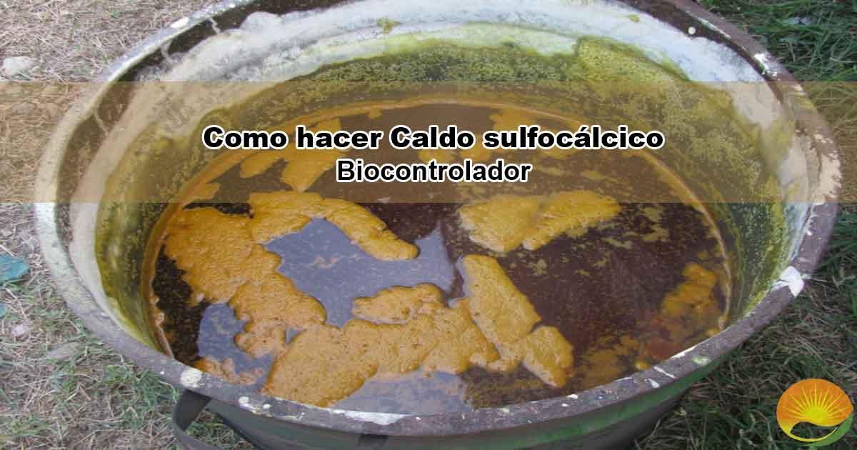 Caldo sulfocálcico