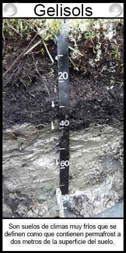 Tipos de suelos. Gelisols