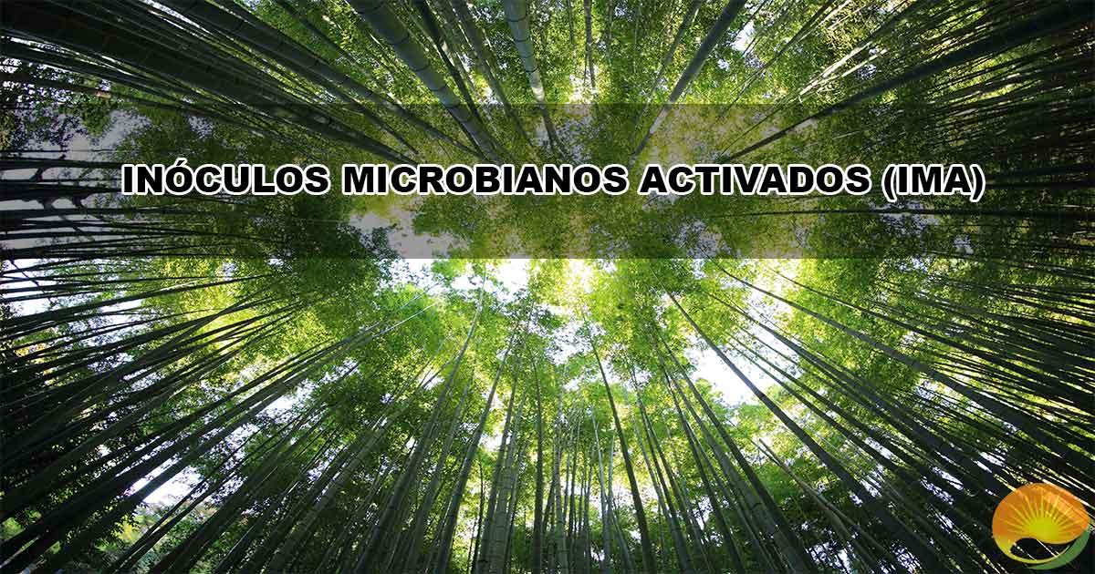 INÓCULOS MICROBIANOS ACTIVADOS (IMA)