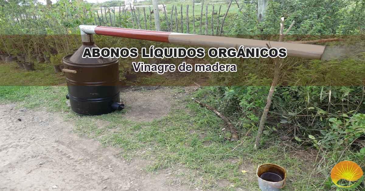 Cómo hacer vinagre de madera