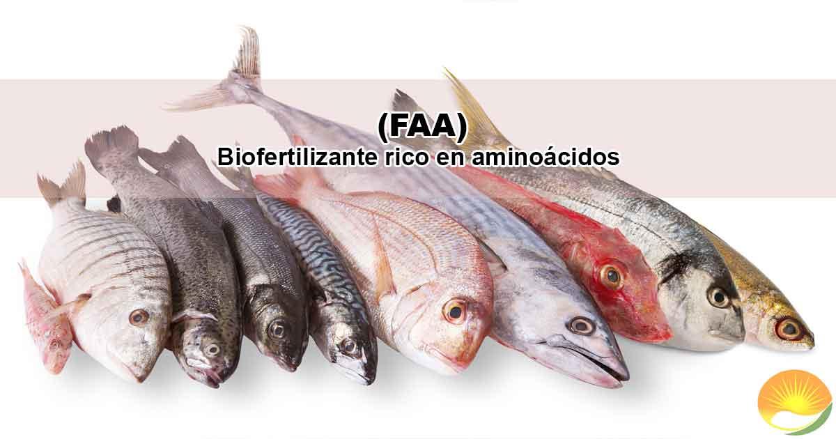 Fertilizante rico en aminoácidos