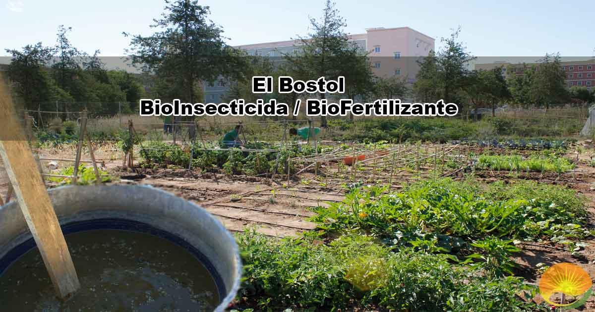 Bostol Realización de insecticida orgánico