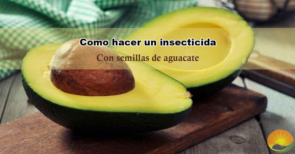 insecticida semilla de aguacate