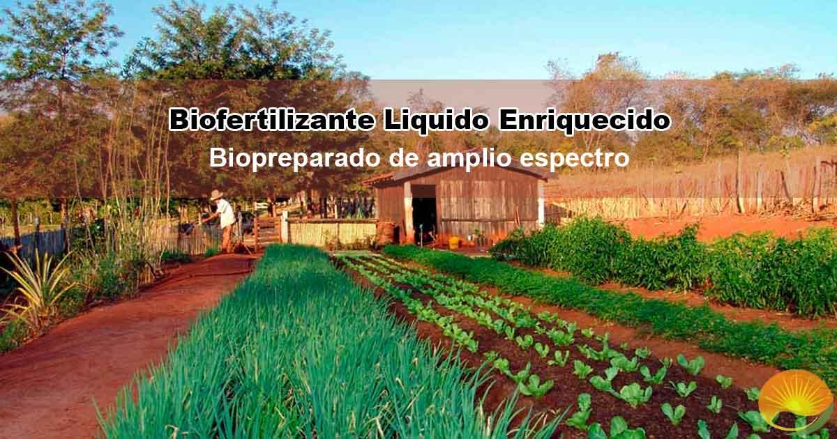 biofertilizante liquido enriquecido