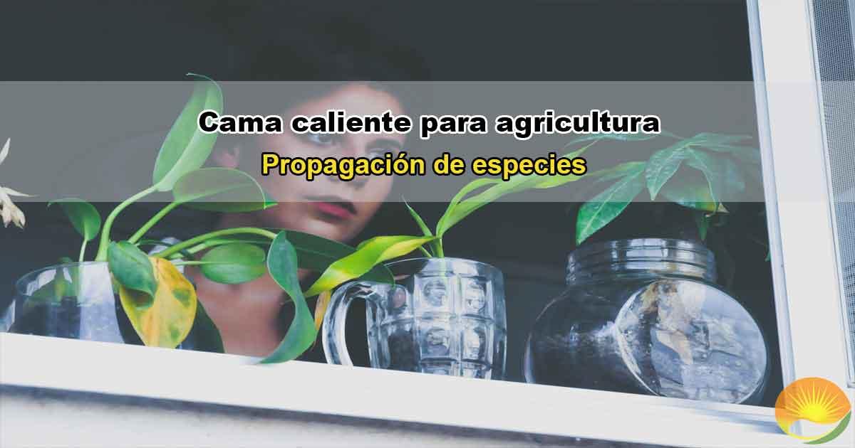 Cama caliente para agricultura y jardinería