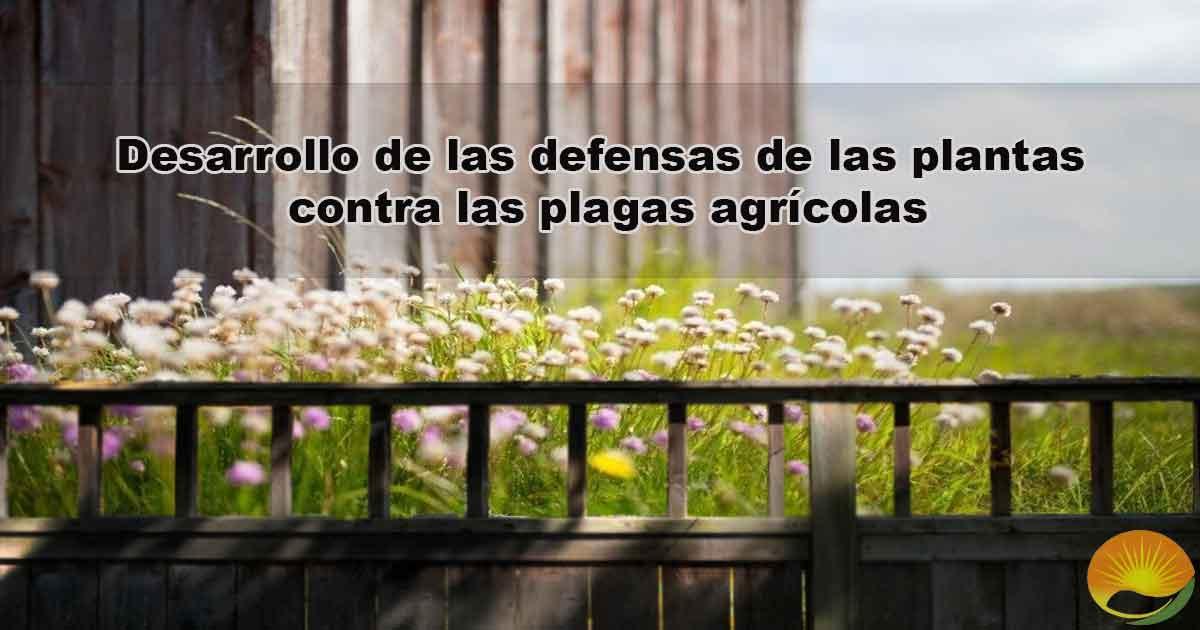 Desarrollo de las defensas de las plantas