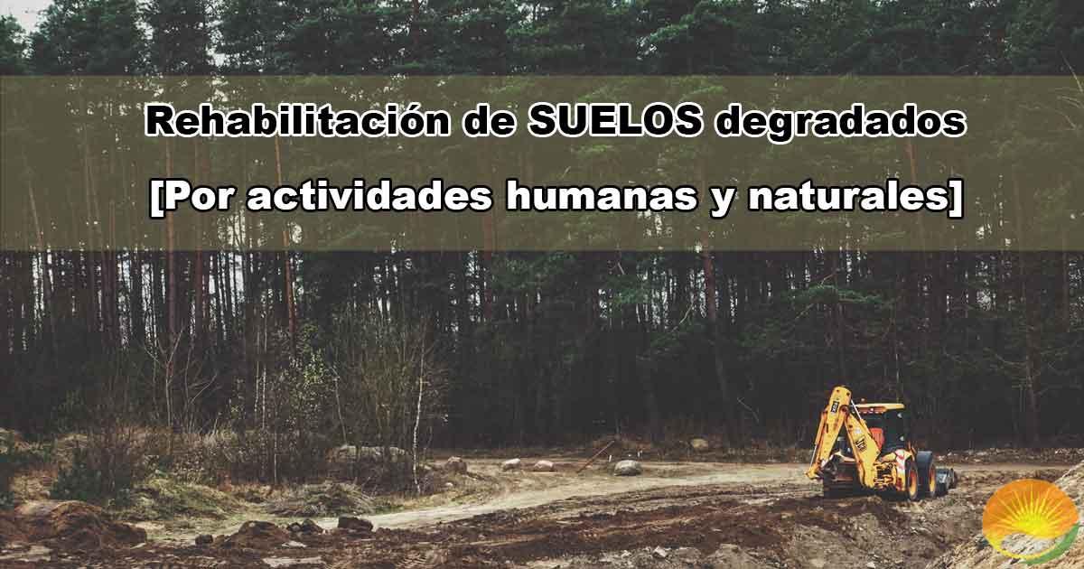 Rehabilitación de suelos
