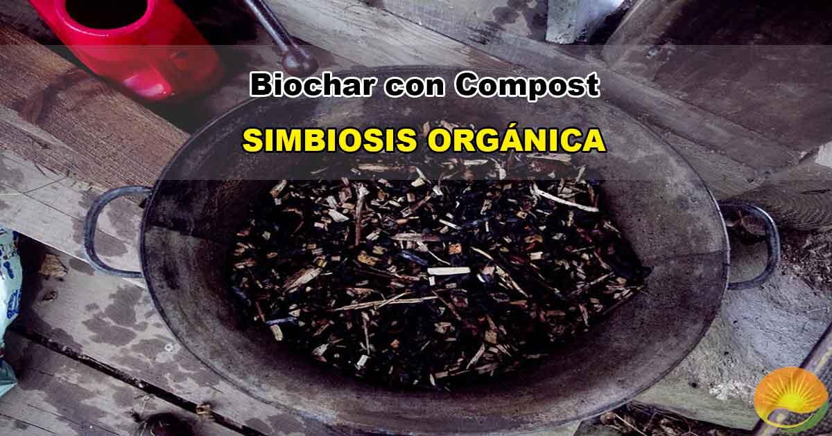 Biochar con compost