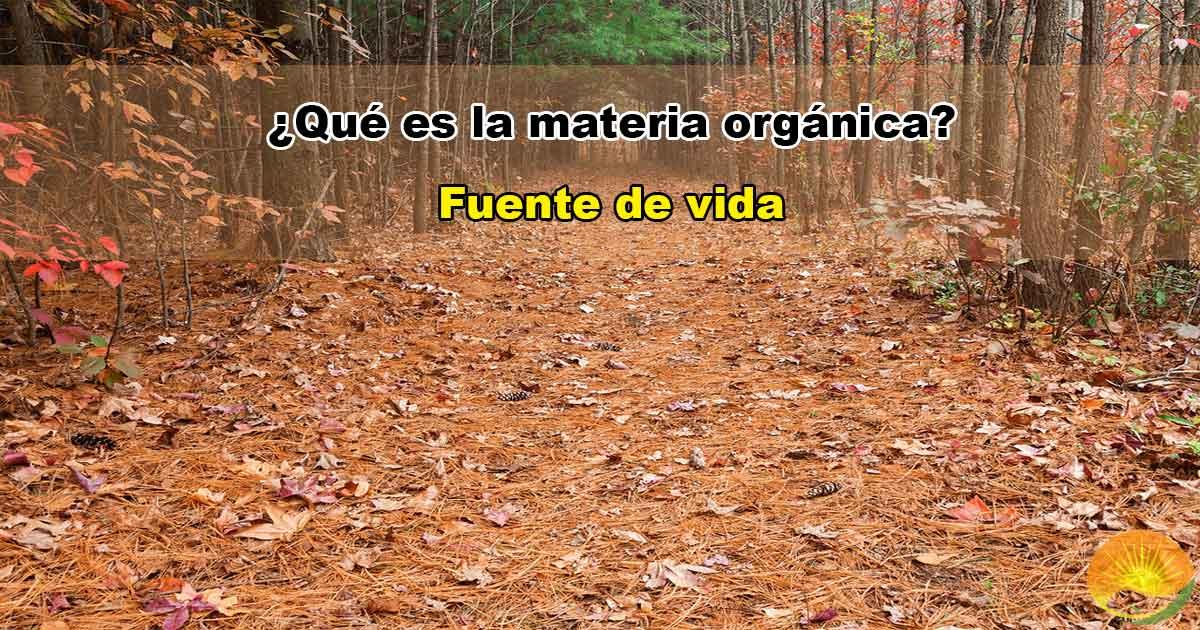 Qué es la materia orgánica