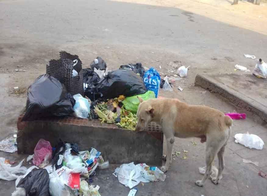 Residuos callejeros