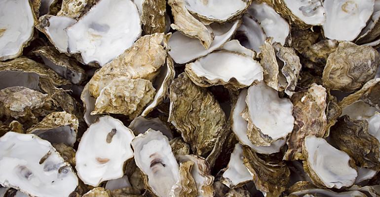 Conchas de ostras.