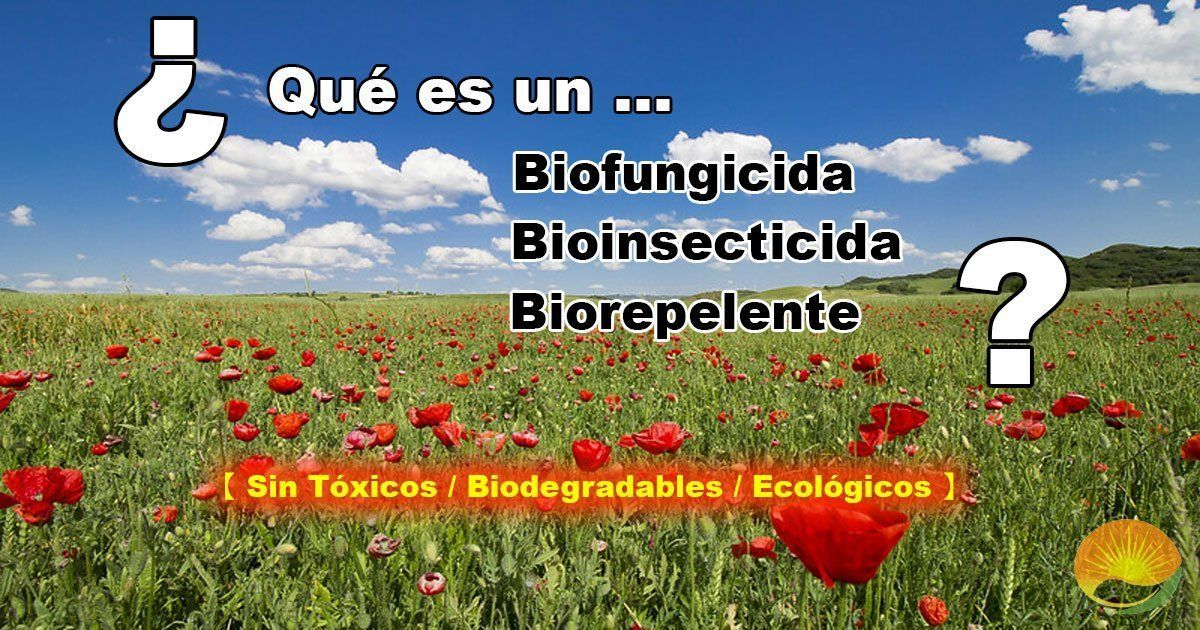 Biofungicida