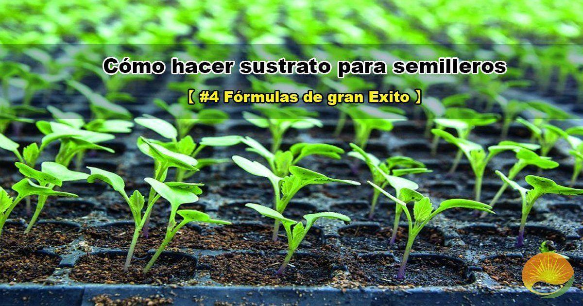 Sustrato para semillero