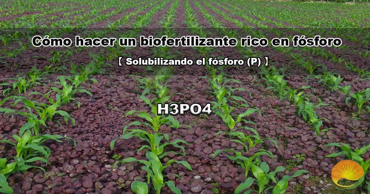 Cómo hacer un fertilizante rico fósforo