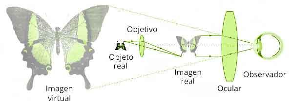 Cómo funciona un microscopio óptico
