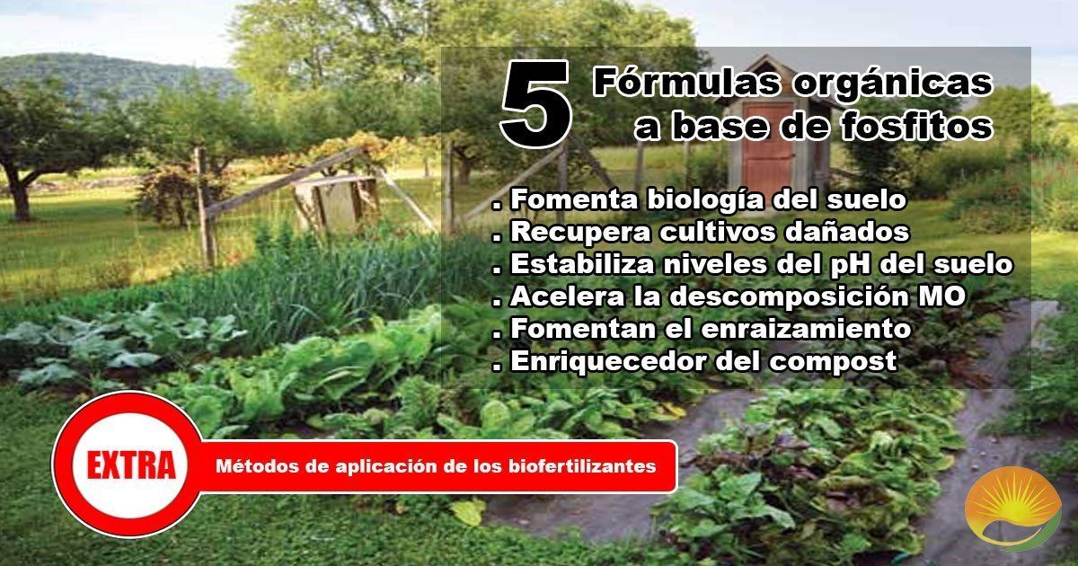 formulas orgánicas a base de fosfitos