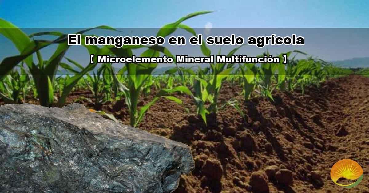 Manganeso en el suelo agrícola