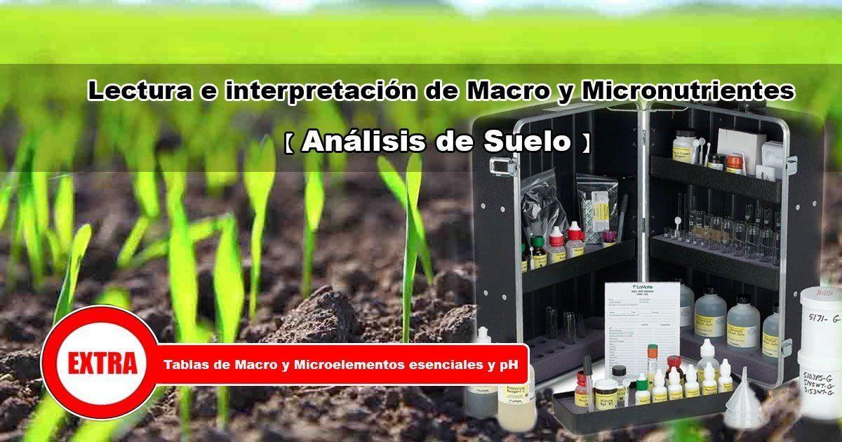 Lectura e interpretación de macro y microelementos agrícolas
