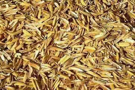Acolchado de cascarilla de arroz