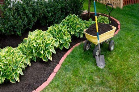 Mulching orgánico de turba.