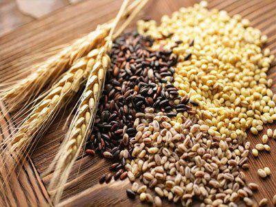 Cereales. Manual de cultivo.