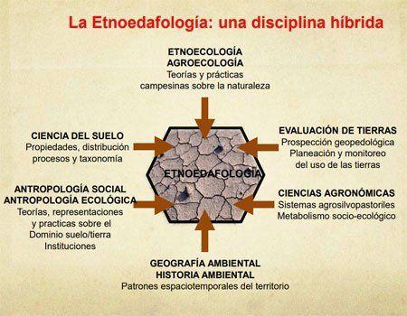 Etnoedafología. Plantas indicadoras