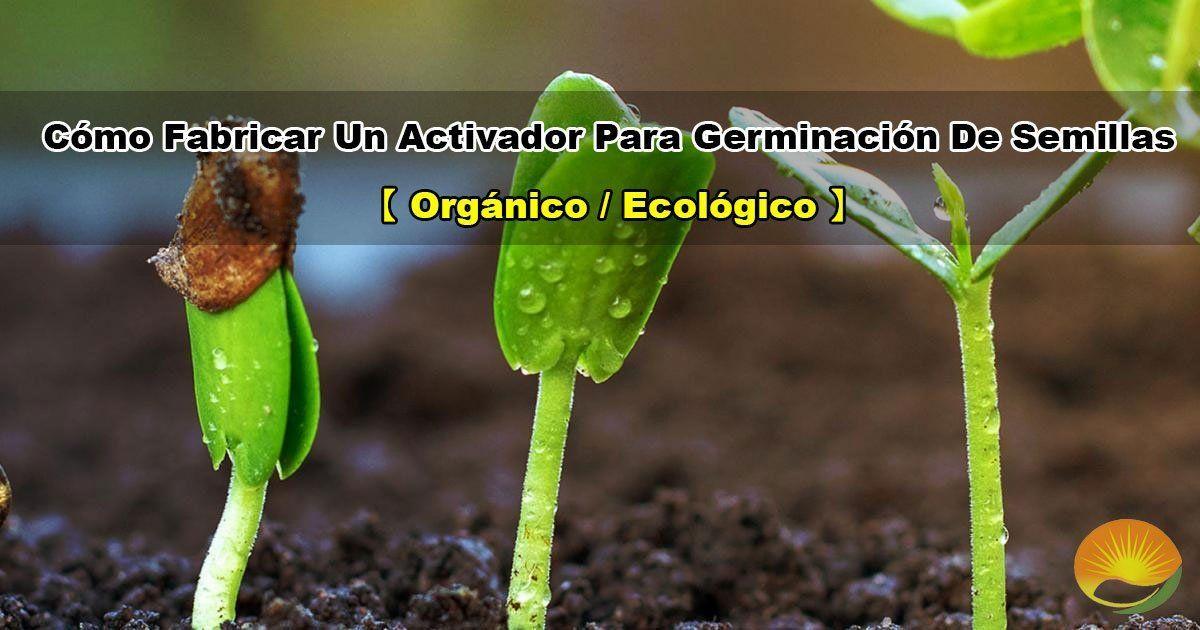 Insumo activador para la germinación de semillas