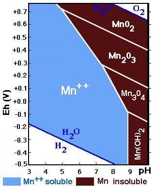 Valores de Ec y pH de solubilidad del manganeso.